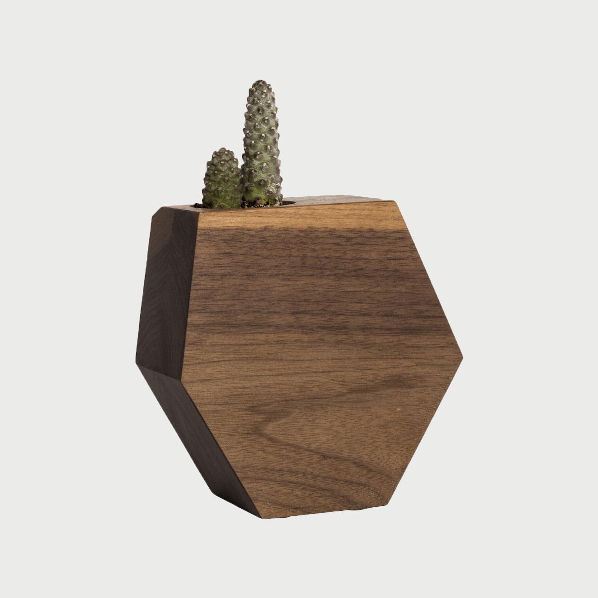 Hexagon walnutshrink