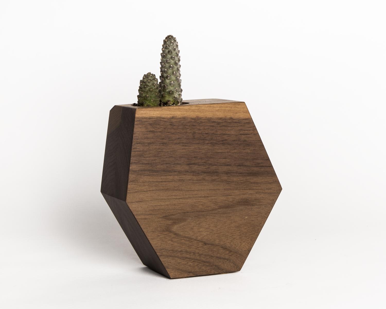 Hexagon walnut