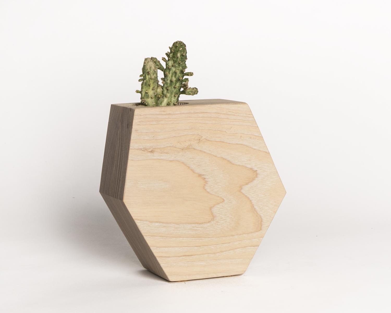 Hexagon ash