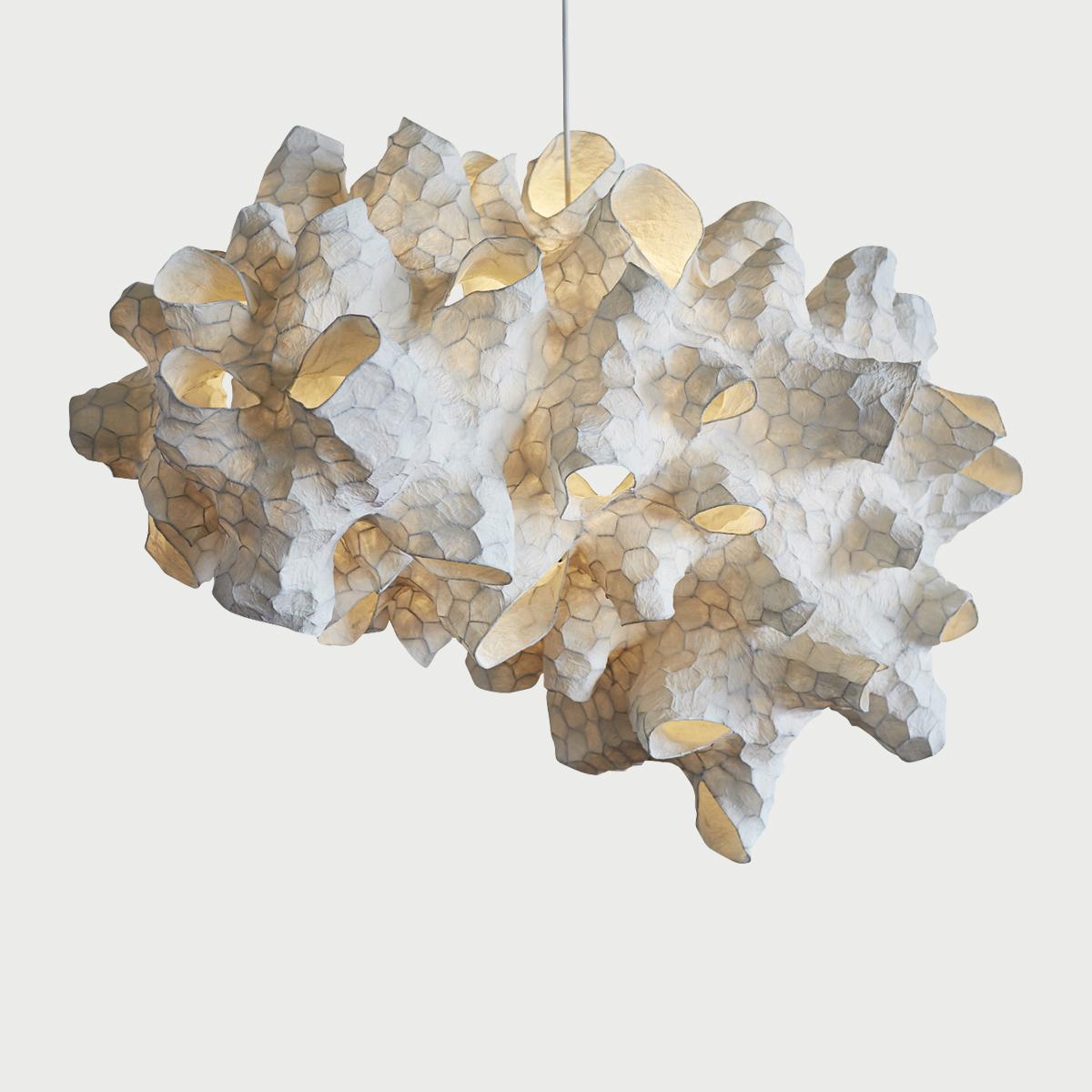 Pw honeycomb light dark