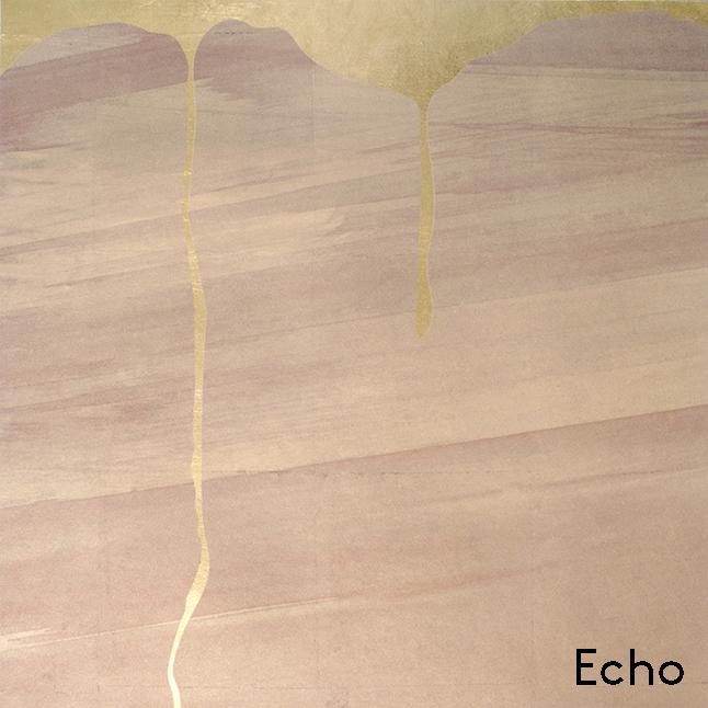 Echo copy