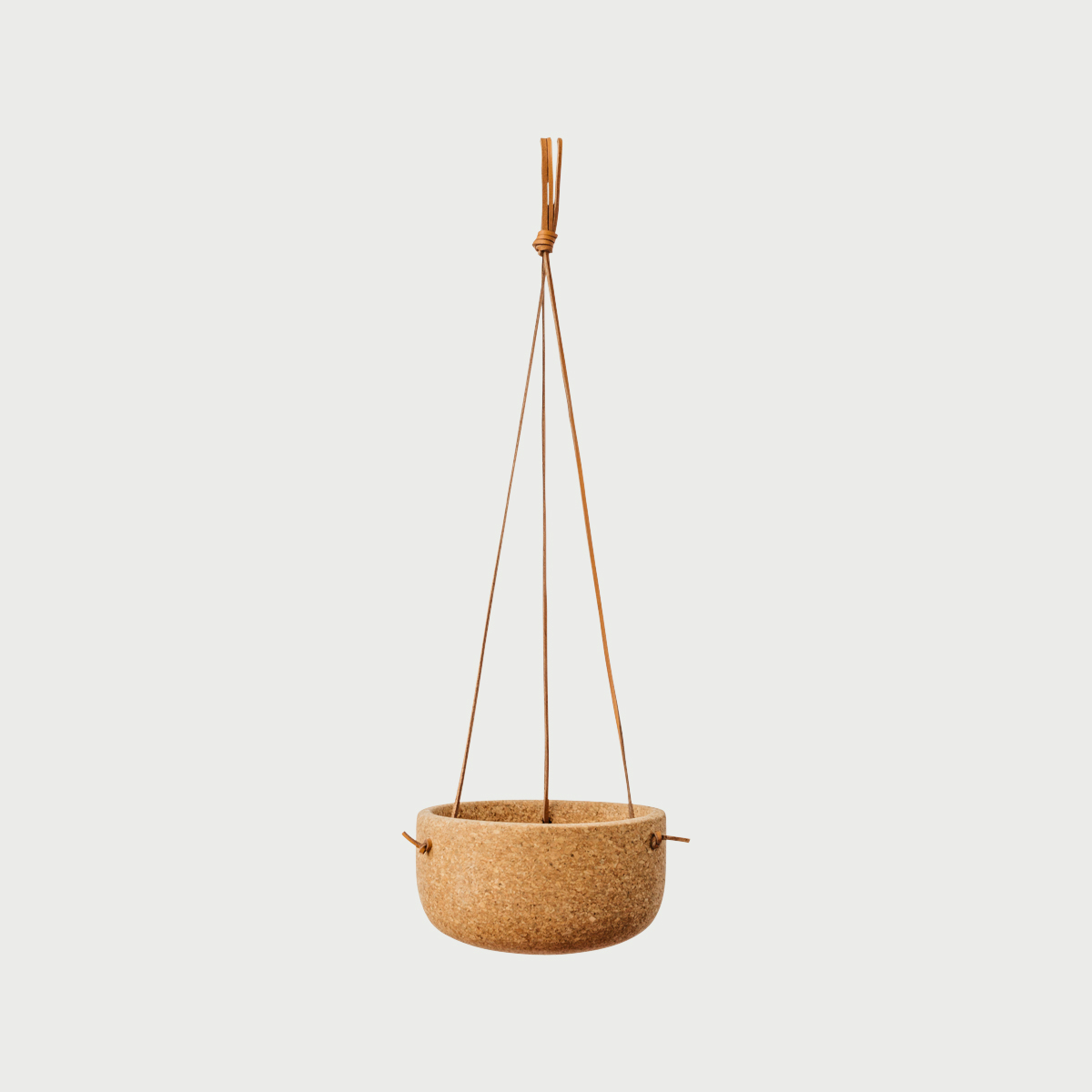 Hangingplanter2