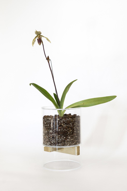 Banan acrylic planter