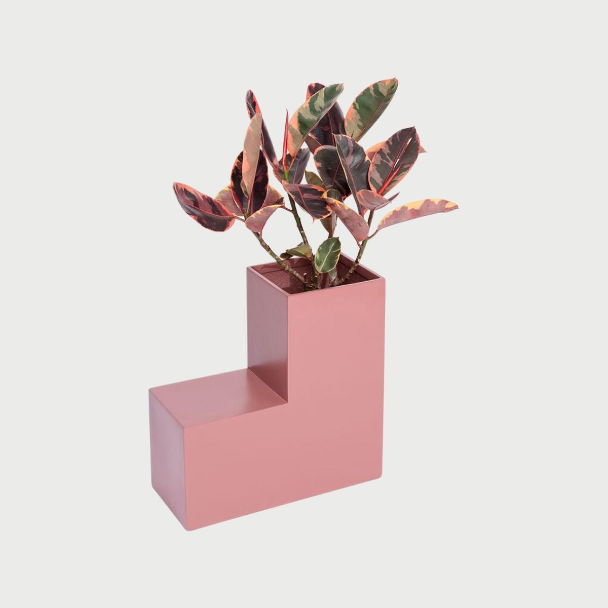Tetrisplanter