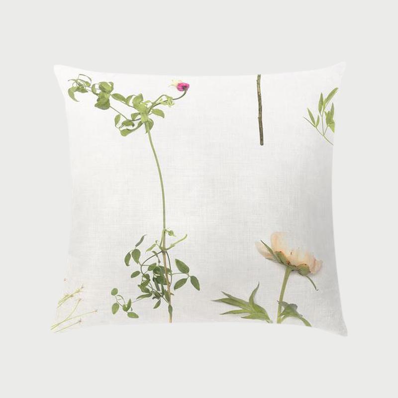 Flora wildflower