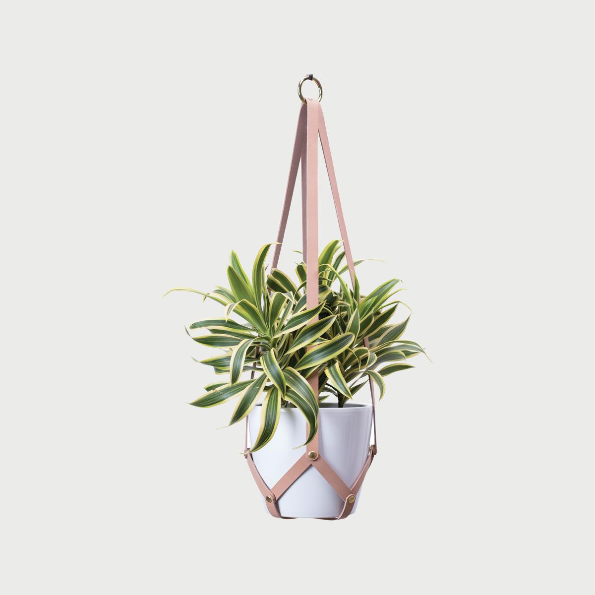 Hanging planter tan white pot 1 281 29
