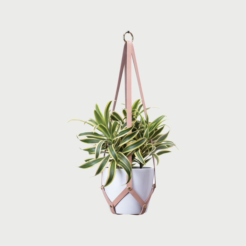 Hanging planter tan white pot 1 281 29