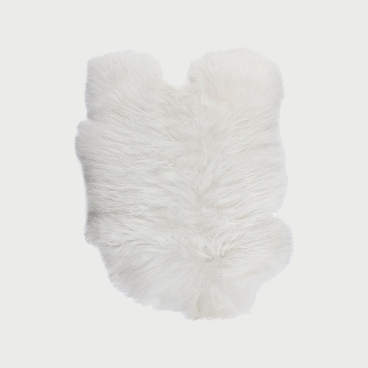 Sheepskin whiteweb 2048x2048