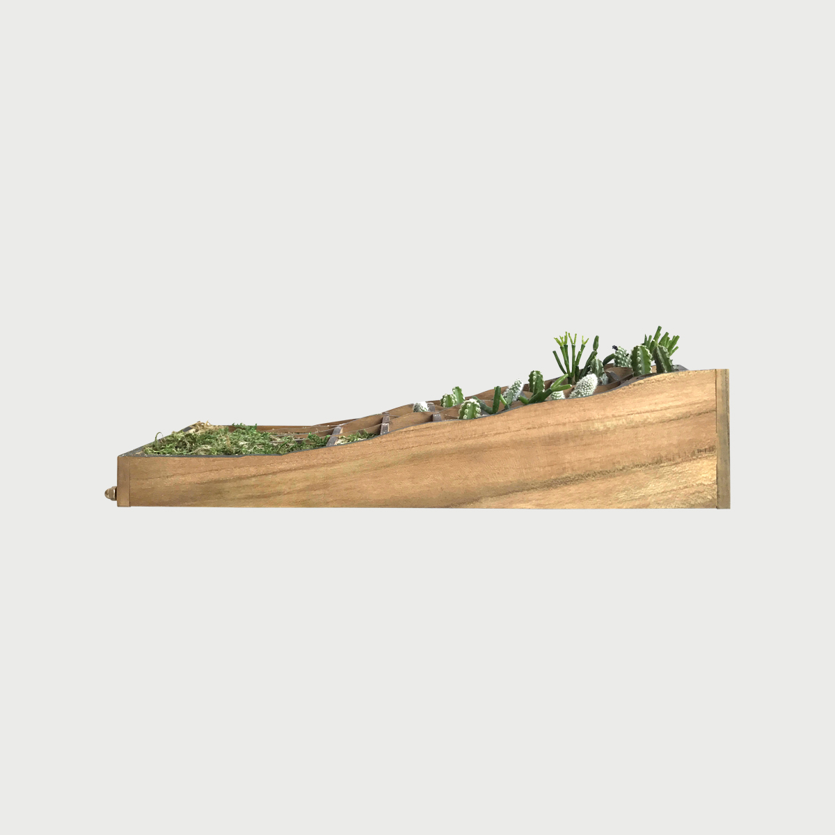 Plant in topo frameless